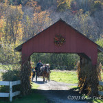 Carriage Ride Stowe