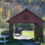 Carriage-Ride-Stowe